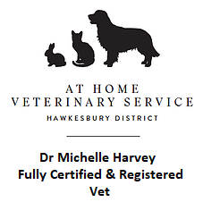 At Home Vet
