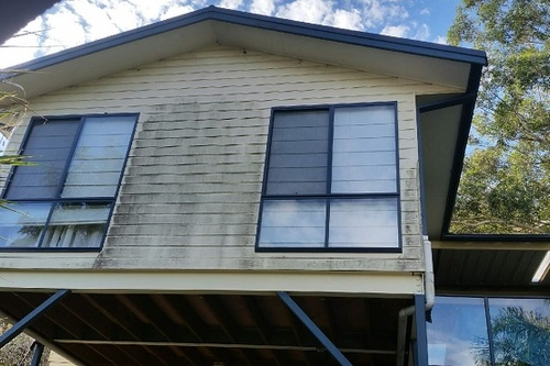 Mould_on_Weatherboard_house_exterior.jpg
