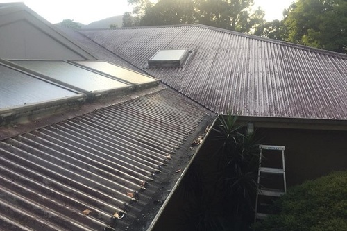 Colorbond_roof_covered_in_mould_port_macquarie.jpg