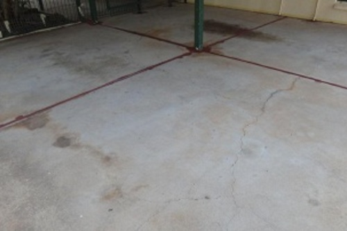 Before Concrete Painting