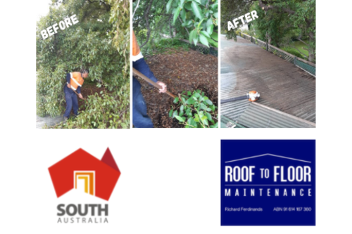 Copy_of_Copy_of_Shed_roof_clean.png